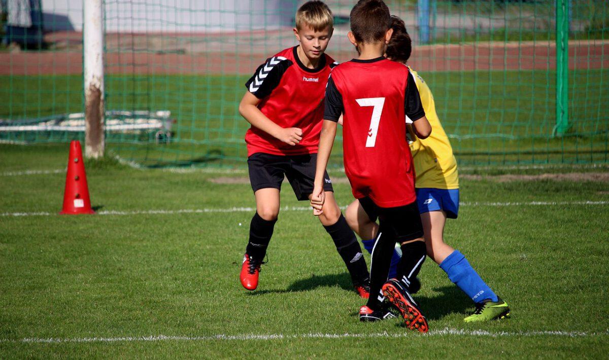 zawodnicy piłka nożna