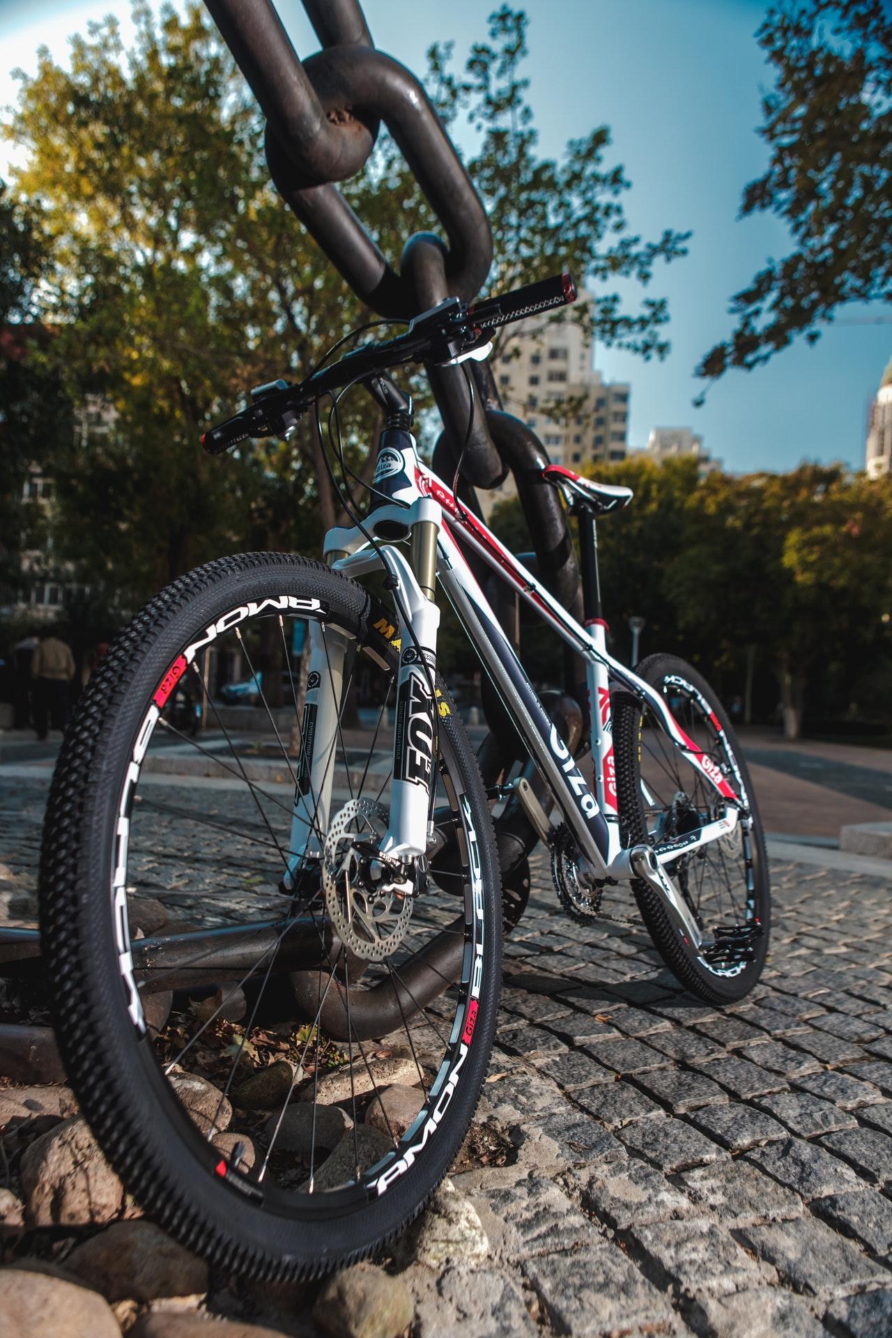 Czy w sklepie z rowerami online można kupić dobry rower dla dzieci?